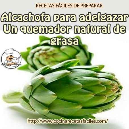 Planta de alcachofa para adelgazar