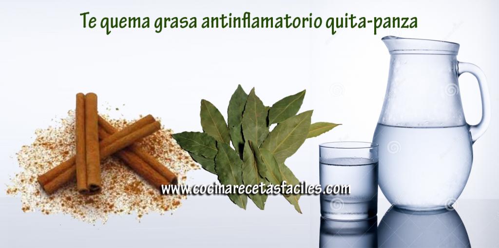 Te quema grasa anti inflamatorio quita-panza