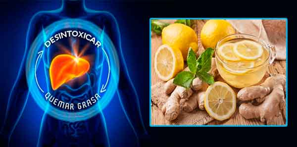 Desintoxica el hígado y baja de peso con estas bebidas nocturnas